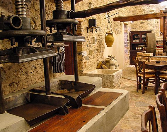 Liotrivi World Olive Oil Museum